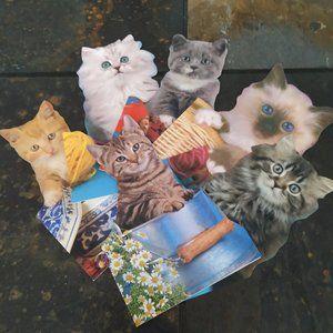 🎉Host Pick🎉 Vtg.Greeting birthday 6 cats cards